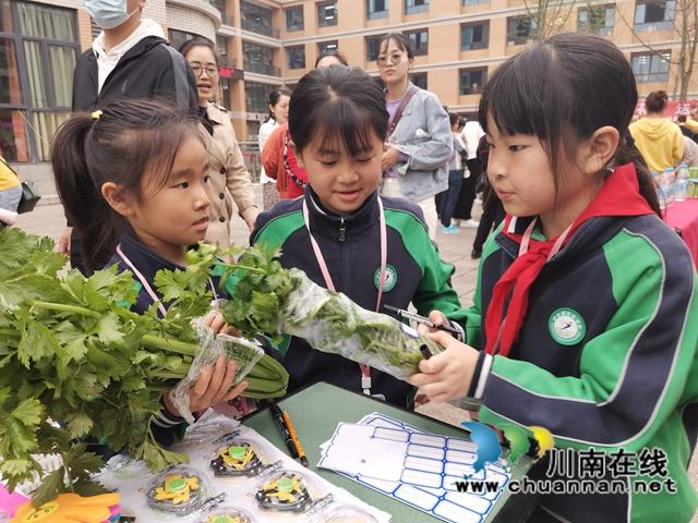 泸县:师生种出有机菜 义卖捐赠一份爱(图2)